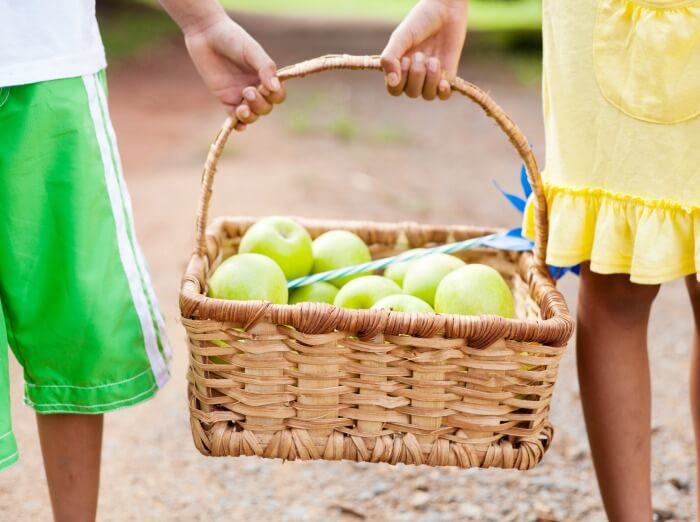 The Inspired Treehouse - This apple orchard game is a fun fall-themed activity to help kids work on gross motor skills development.