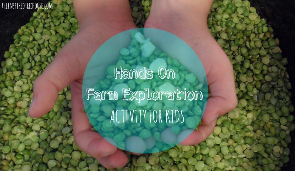 sensory activities farm exploration