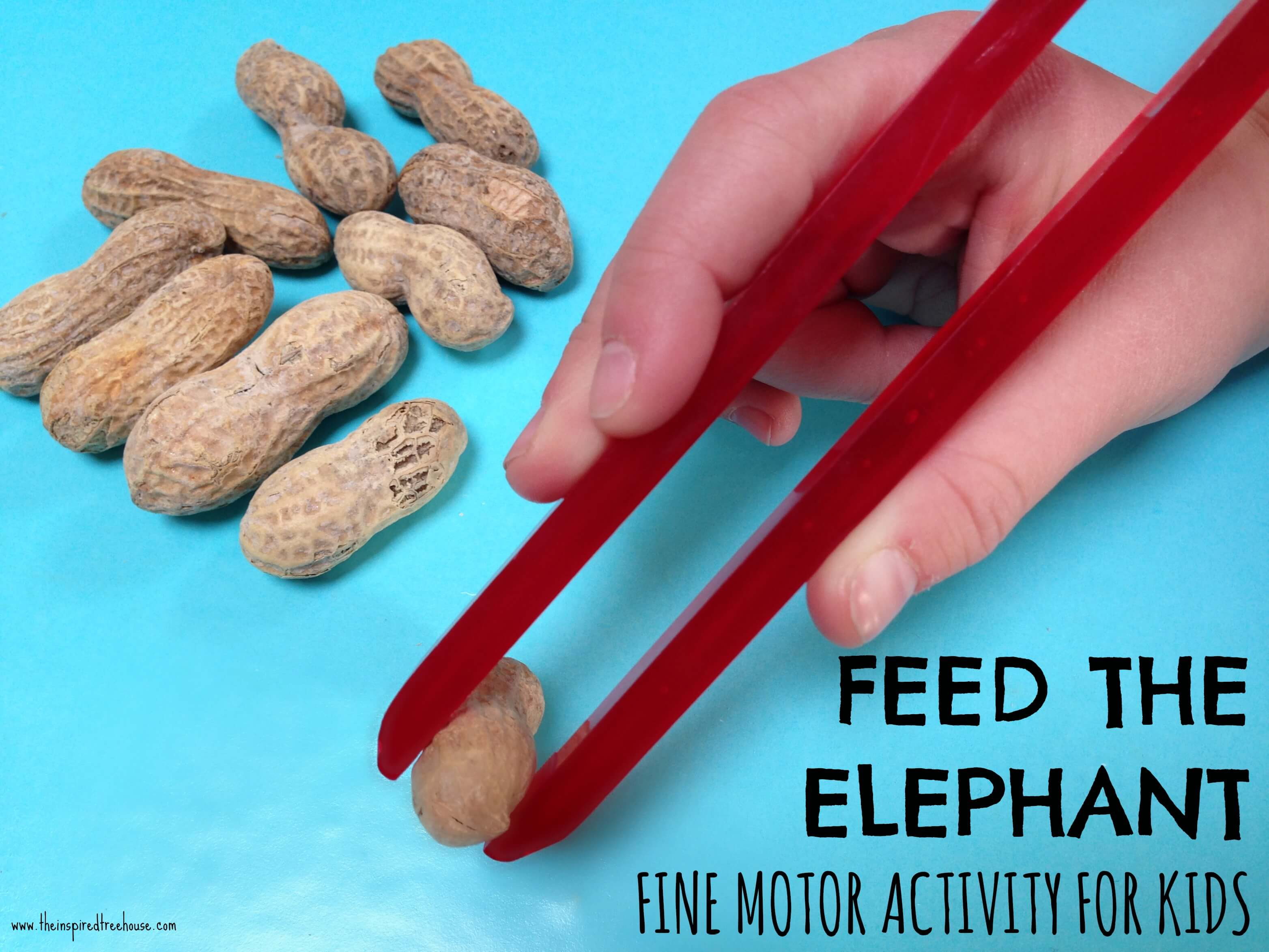 Fine motor grasping skills feed the elephant for Motor activities for preschoolers