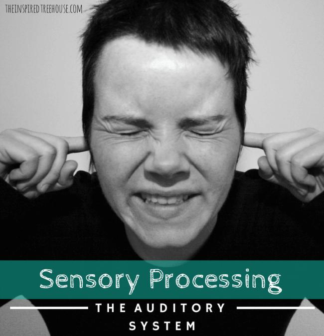 sensory processing auditory