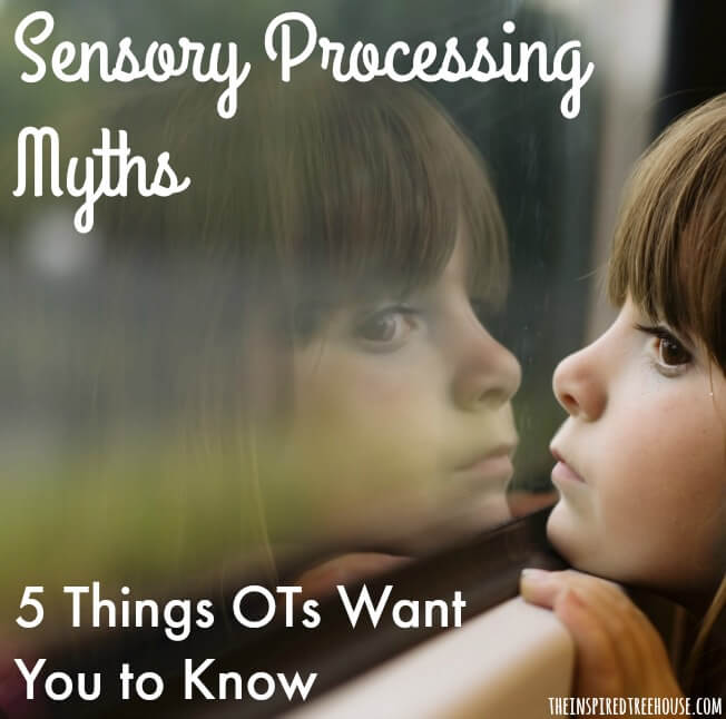 sensory processing myths square