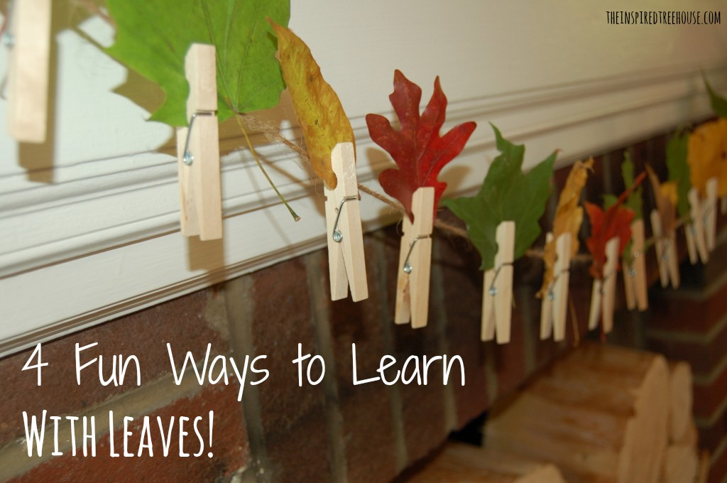 sensory motor lesson plan 4 fun ways to learn with leaves