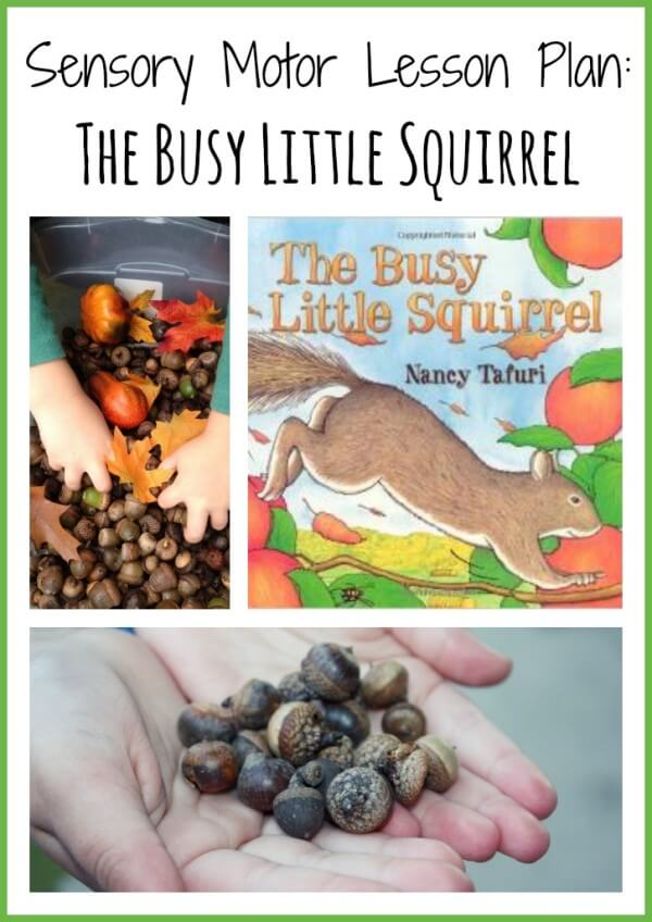 sensory motor lesson plan the busy little squirrel