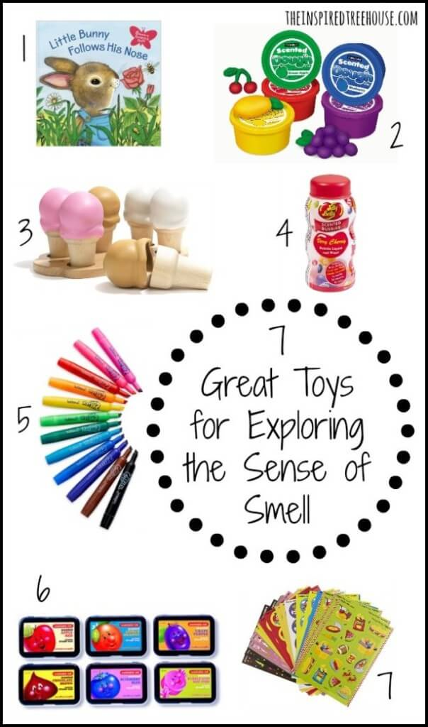 sensory processing the olfactory system toys
