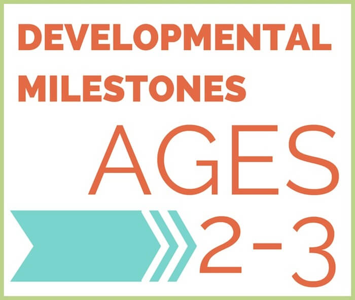 DEVELOPMENTAL MILESTONES 2-3 featured