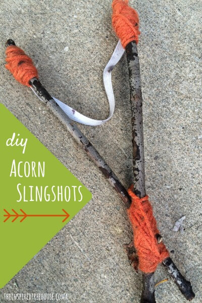 acorn slingshots title resized