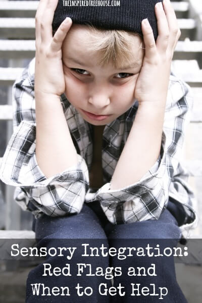 sensory integration red flags resized