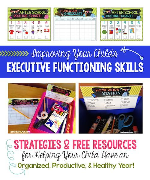 executive functioning title