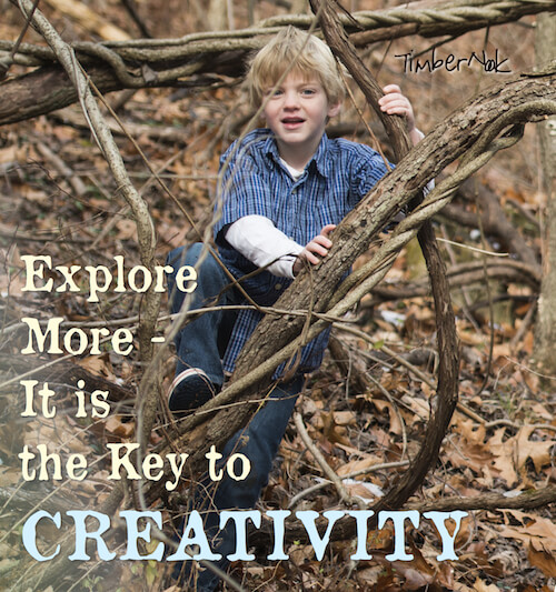Backyard Treehouse Pediatric Therapy :  NEW YEAR, HEALTHY KIDS KIDS AND EXPLORATION  The Inspired Treehouse