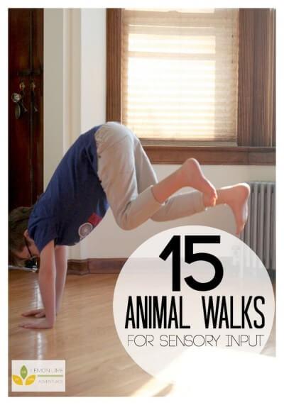 15-Animal-Walks-for-Sensory-Diet