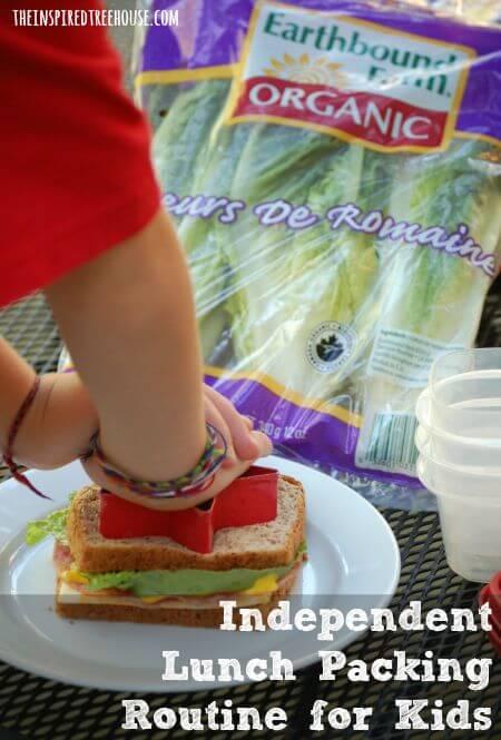 lunch box ideas 1