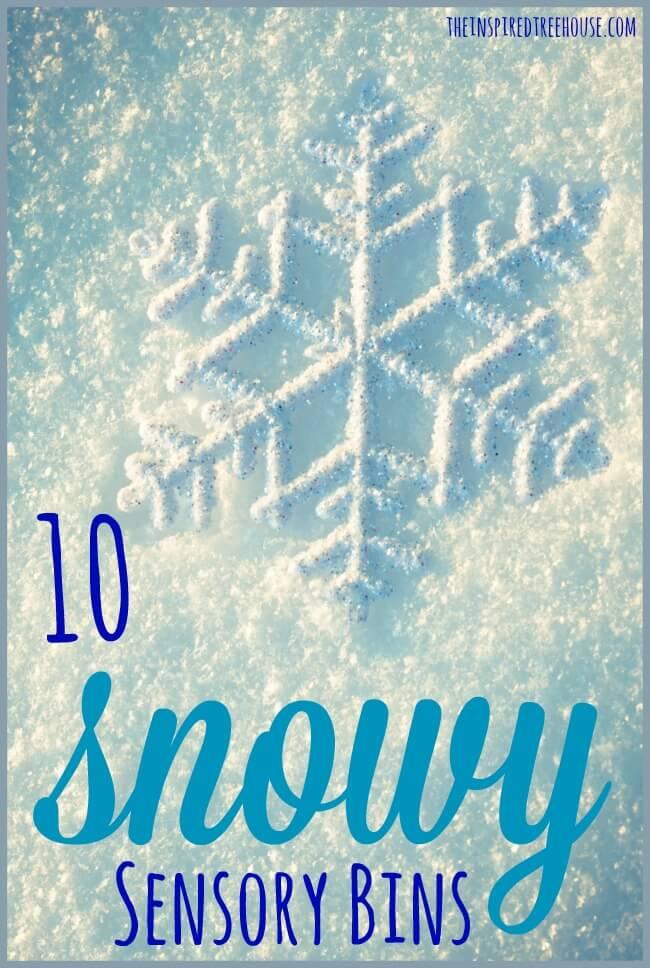 10 snowy sensor bins pin
