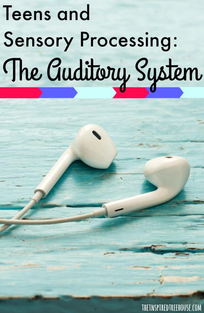 sensory processing auditory pin