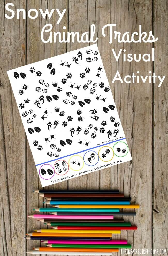visual perception activities snowy animal tracks the